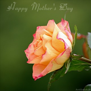 ♥ Happy Mother's Day ♥