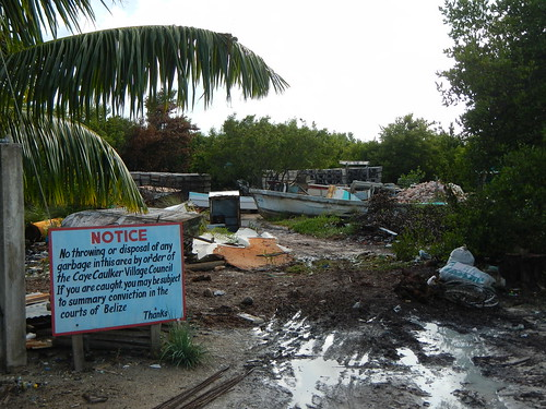 No dumping sign in mangrove swamp