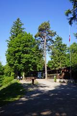 Altberg ZH