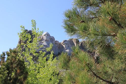 Trees Framing Mount Rushmore