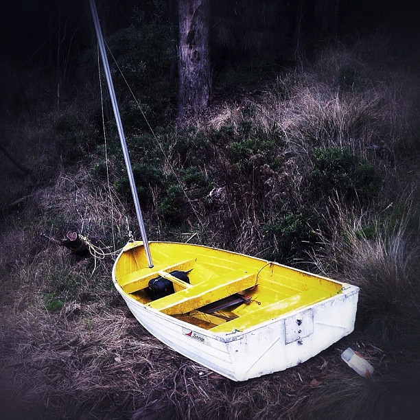 Tinnie-turned-sailboat. #makeshift #yellow #boat