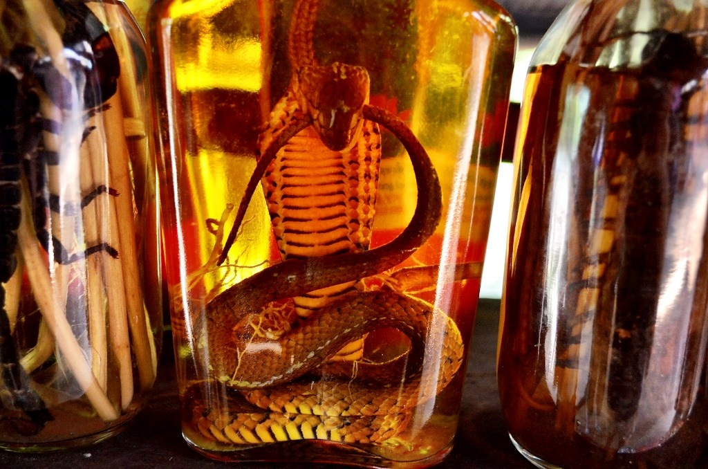 Snake infused moon shine in Laos