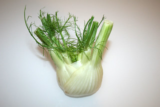 07 - Zutat Fenchel / Ingredient fennel