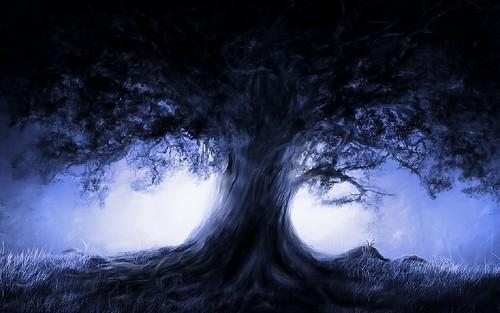 [フリー画像素材] グラフィック, イラスト, 樹木 ID:201207161200