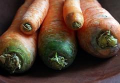zanahorias 004