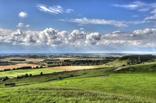 Early Evening On Dunstable Downs