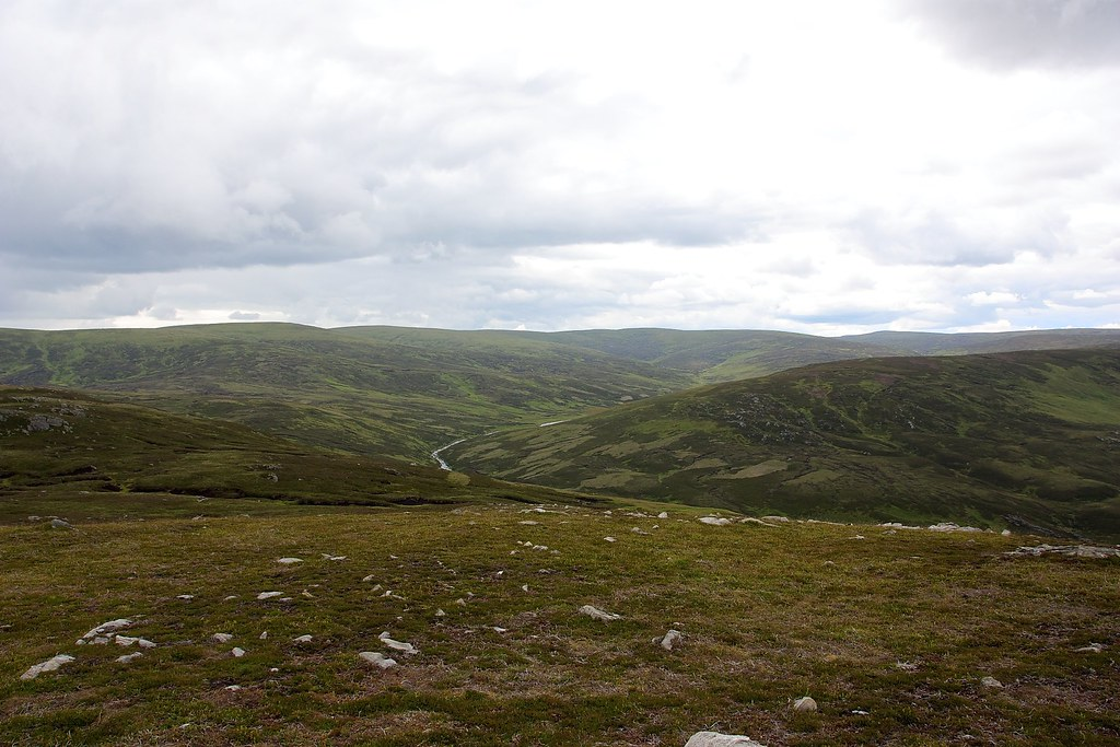 The Angus Hills