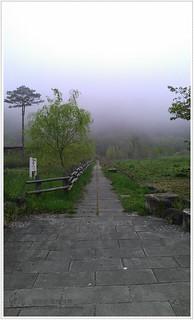 IMAG1303