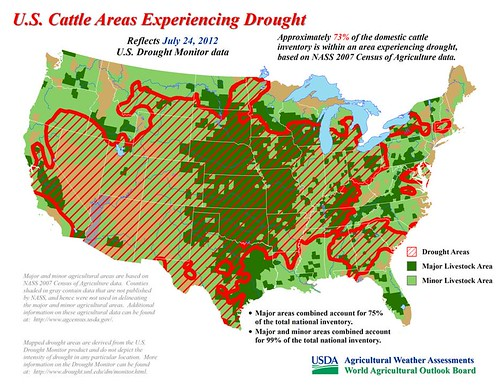 Approximately 73% of the domestic cattle inventory is within an area experiencing drought, based on NASS 2007 Census of Agriculture data.