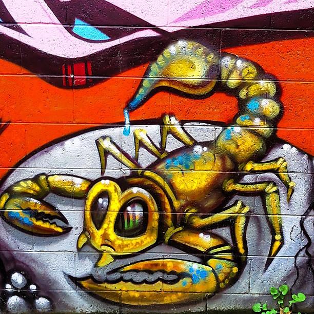 Art Amazing Wall Graffiti Scorpio Tbt Tweegram Str
