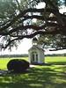 St. Leo woods chapel