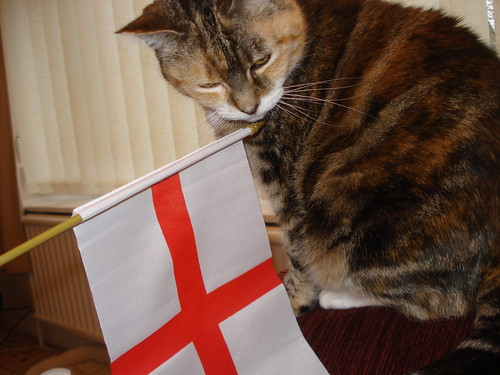 Happy St George's Day!