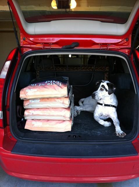 Image Result For Pet Food Express