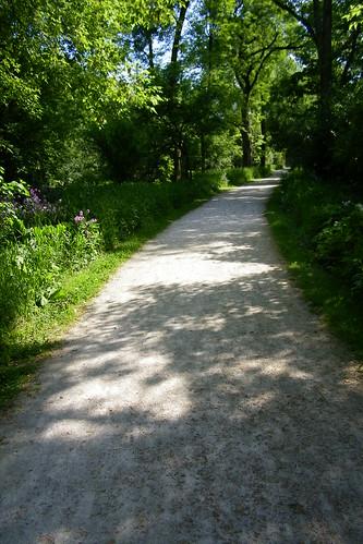 Fullersburg Woods Forest Preserve (Oak Brook, Illinois)
