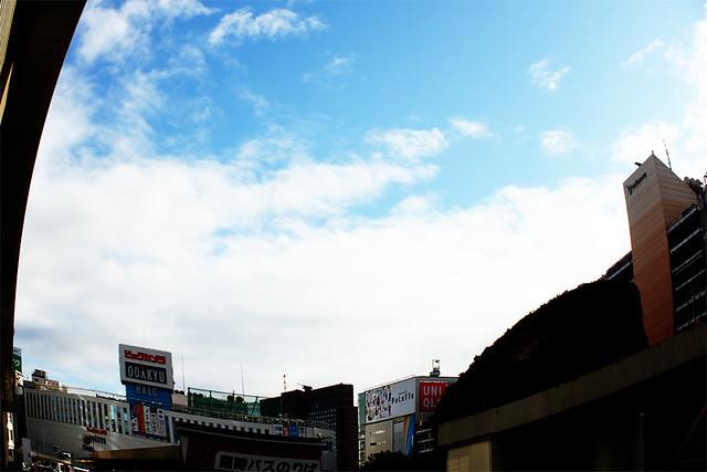 滝子山_05