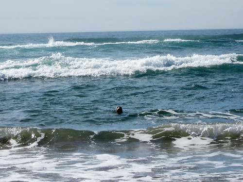 Pacific City_June 15, 2012_20