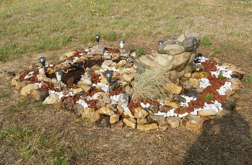 flowers justin plants garden texas habitat rockgarden