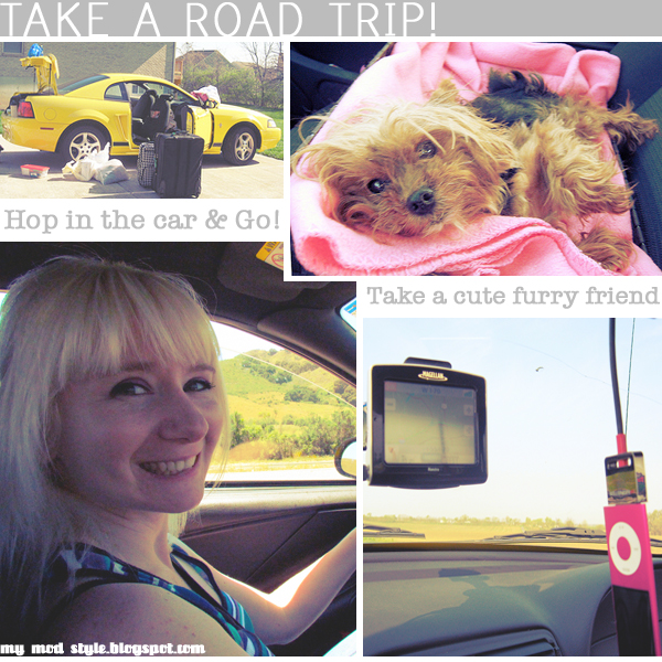 Road Trip Collage gry