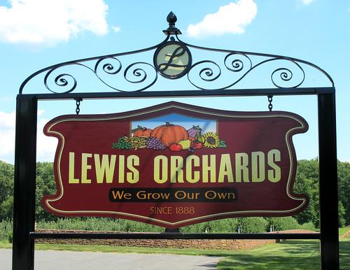 Lewis farm market coupons
