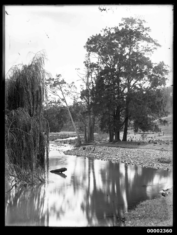 Riverscape, possibly along the Hawkesbury River NSW, 1880-1909