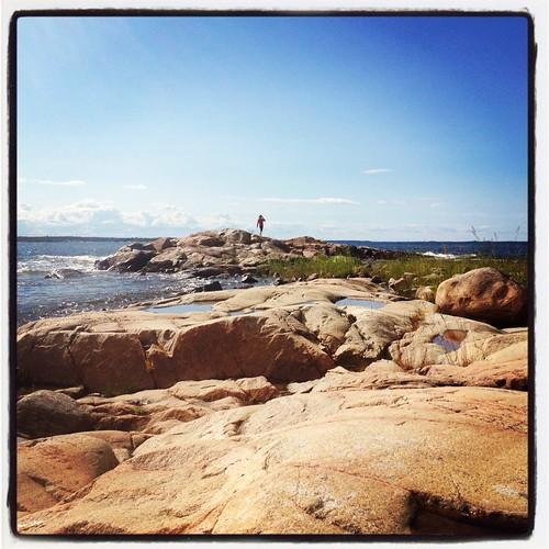 Viggo på klipporna
