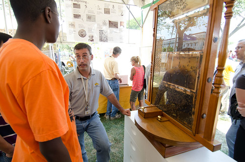"Agricultural Research Service Biological Technician Andrew Ulsamer talks to a visiting student about the live bee colony display at a tent devoted to bee research and honey production at 2012 Smithsonian Folklife Festival, on Thursday, June 28, 2012 on the National Mall in Washington, D.C.  One of the three themes this year is ""Campus and Community."" It celebrates the 150 years of the USDA and the Land-Grant University System. The U.S. Department of Agriculture (USDA) and the Land-Grant system extend education across the country, contributing to American agriculture success and rural prosperity. ""Campus and Community"" has demonstrations, discussions, hands-on activities, and entertainment to that showcase the many ways that this partnership works to improve American agriculture and rural life.  USDA photo by Lance Cheung."