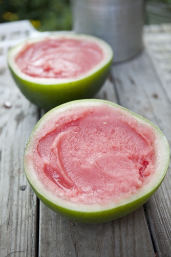 Watermelon Sorbet from food for my family
