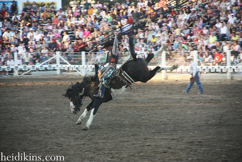 Strawberry Days Rodeo_June 2012 (17)