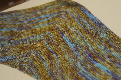 Pogona scarf