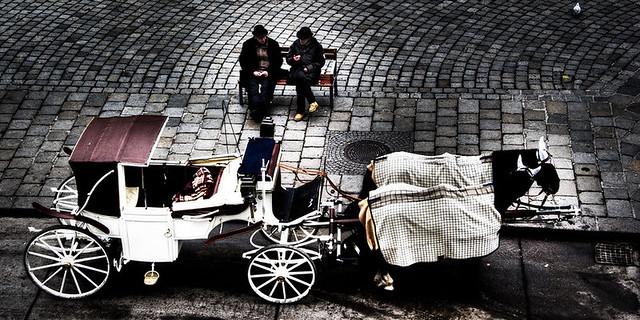 Vienna-horse-carriage