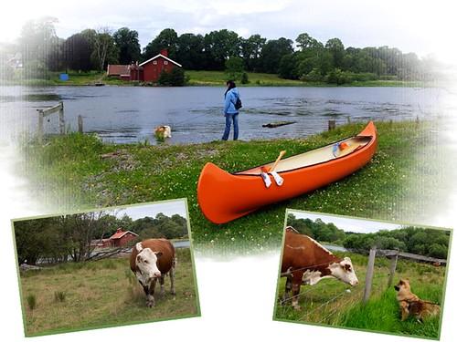 Ragnhildsborgen