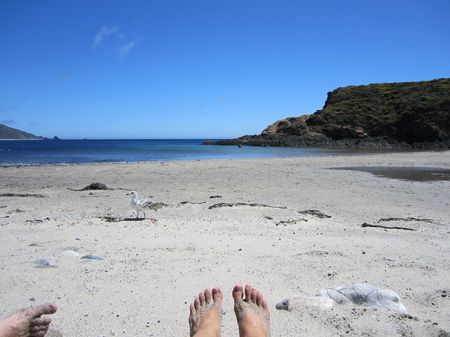 Beach at Andrew Molera State Park