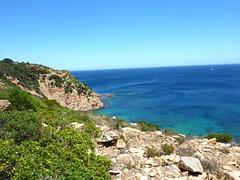 Sur le bord supérieur des falaises de Santa Manza