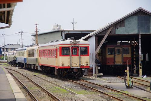 IMGP6587