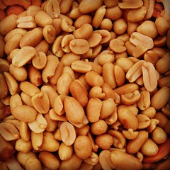 plant(0.0), produce(0.0), fruit(0.0), common bean(0.0), crop(0.0), nuts & seeds(1.0), peanut(1.0), food(1.0),