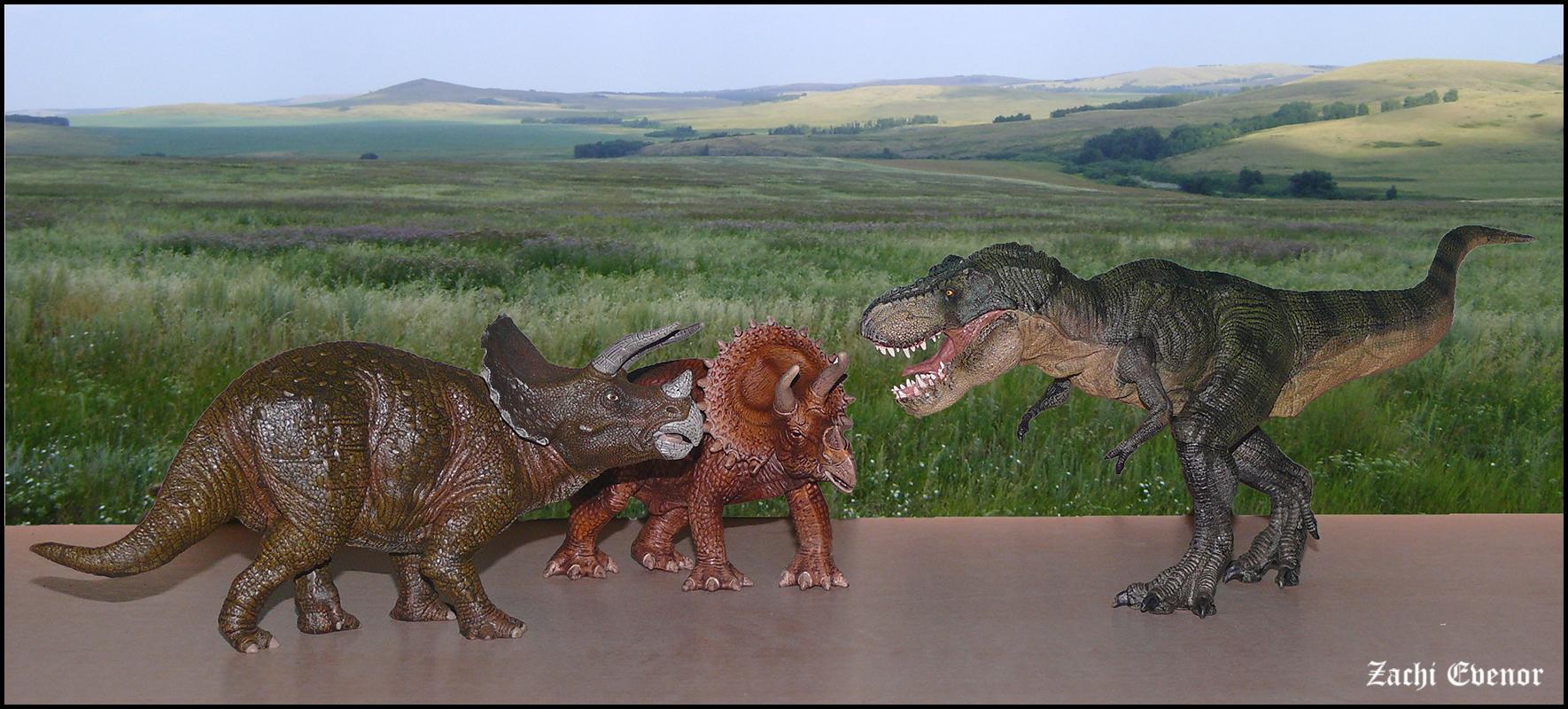 Epic Battle - Triceratops -vs- Tyrannosaurus rex | Epic ... T Rex Vs Triceratops Fighting