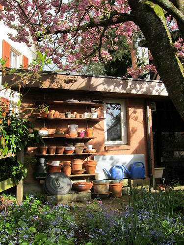 meticulous: a gardening shed