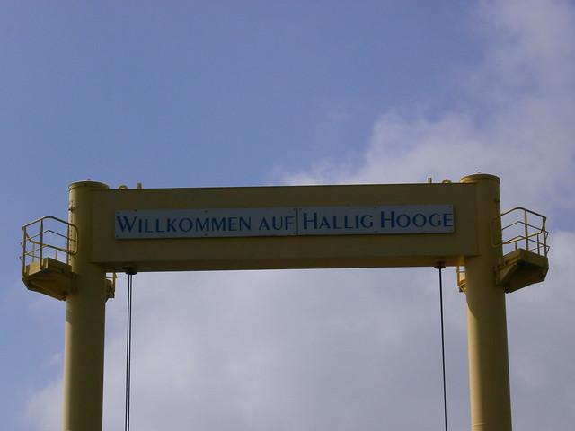 12-04 Hooge