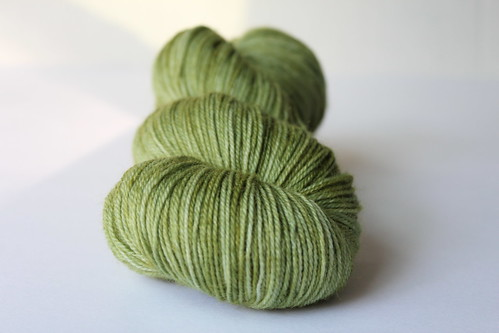 Forest Floor - Kettle Dyed BFL Sock
