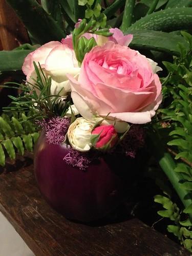 melanzana fiorita-flowered aubergine