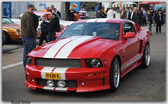 Ford Shelby Cobra GT 500 Mustang'