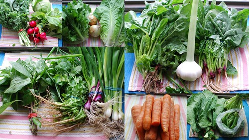 CSA Week 2: Veggies