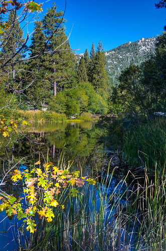 trees mountain lake landscape idyllwild highdynamicrange palmdesert lakefulmor sdosremedios size3x2 ©stevendosremedios