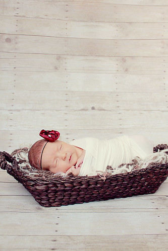 Dakota's Newborn Portraits