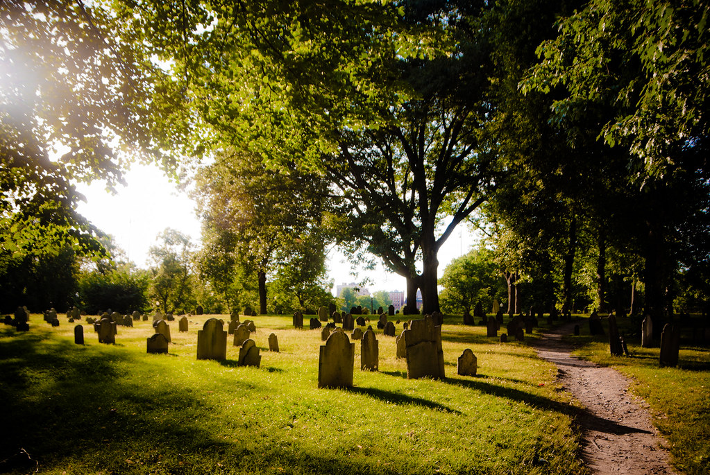 graves and trees