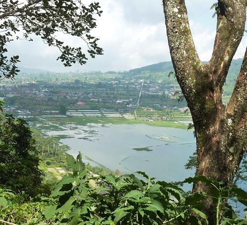 Bali-Route Jatiluwih-Bedugul-Munduk (31)