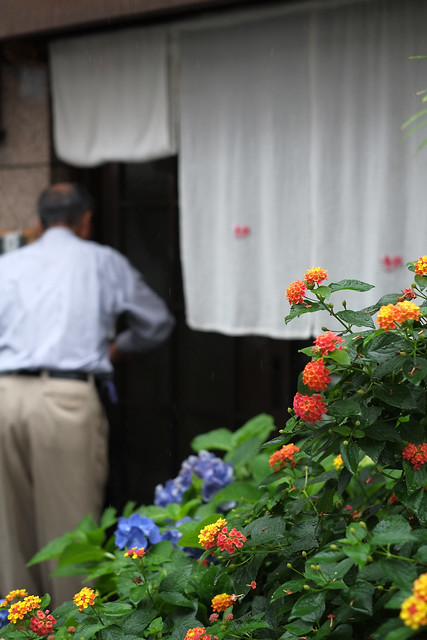店先の花々
