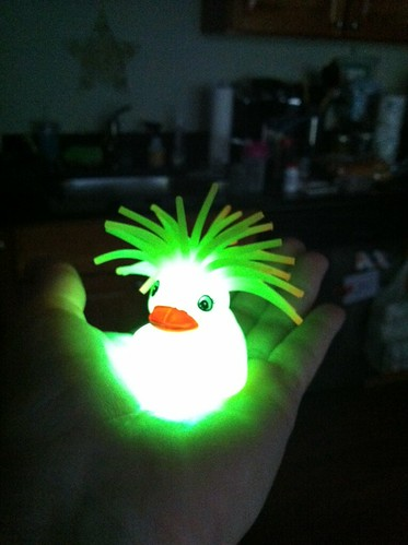 Glowing duck