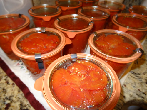 Canning Tomatoes July 2012 (5)