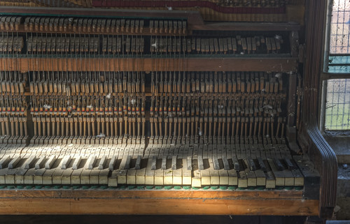 The pigeon's piano